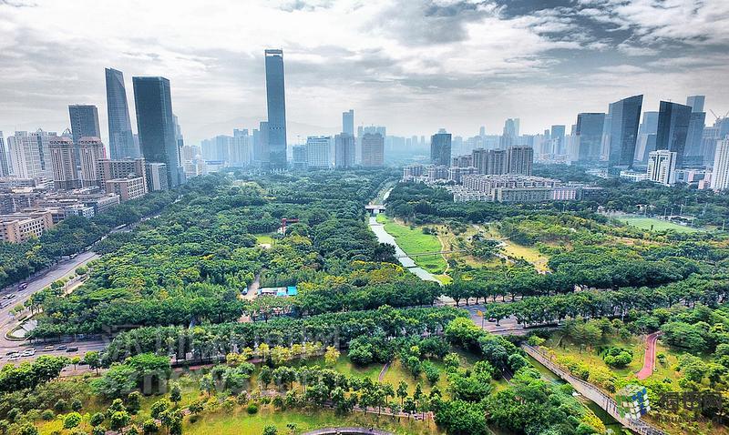 飞越福田:城市中心区风景走廊 走进中心公园